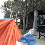 Relaxing in a hammock for Park(ing) Day at The Green Building. (Sharon Neely)
